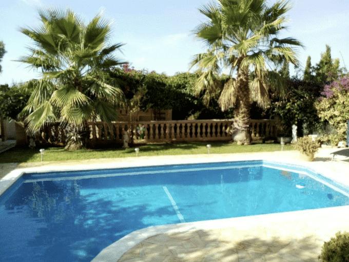 Swimmingpool Palmen Mallorca Immobilie