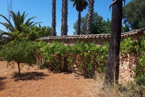 Steinmauer Mallorca Luxusimmobilie