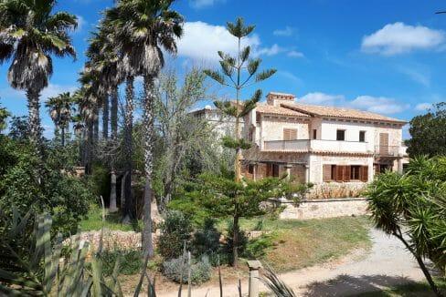 Luxus Villa mit Palmen