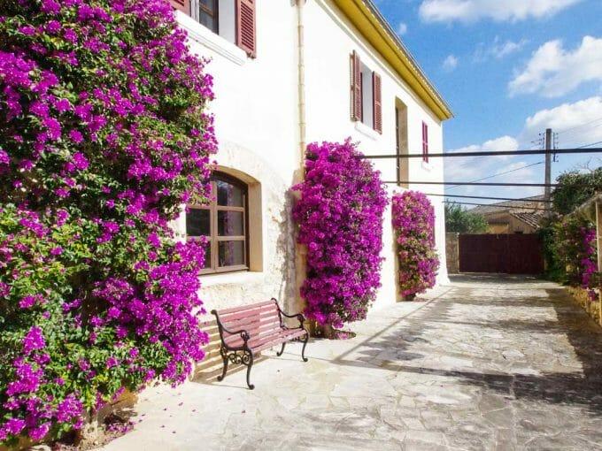 Anwesen, Mallorca, Felanitx, Rustikale Finca, mallorquinisch, mediterran, Herrenhaus, ländlich