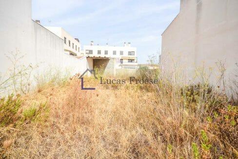 Immobilie Grundstueck Campos Mallorca