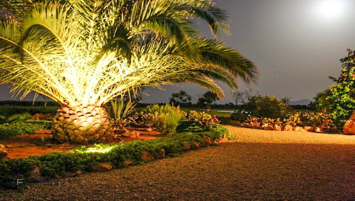 sonne-palmen-strand-meer