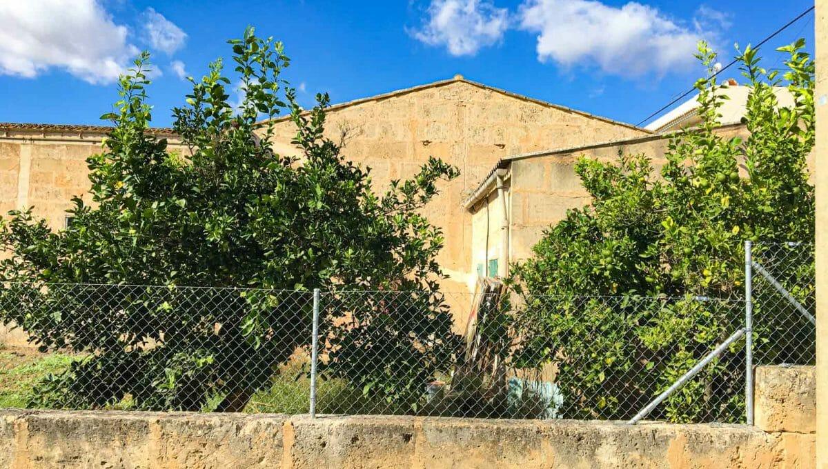 grundstück-mit-garten-in-cas-concos-immobilienkauf-mallorca