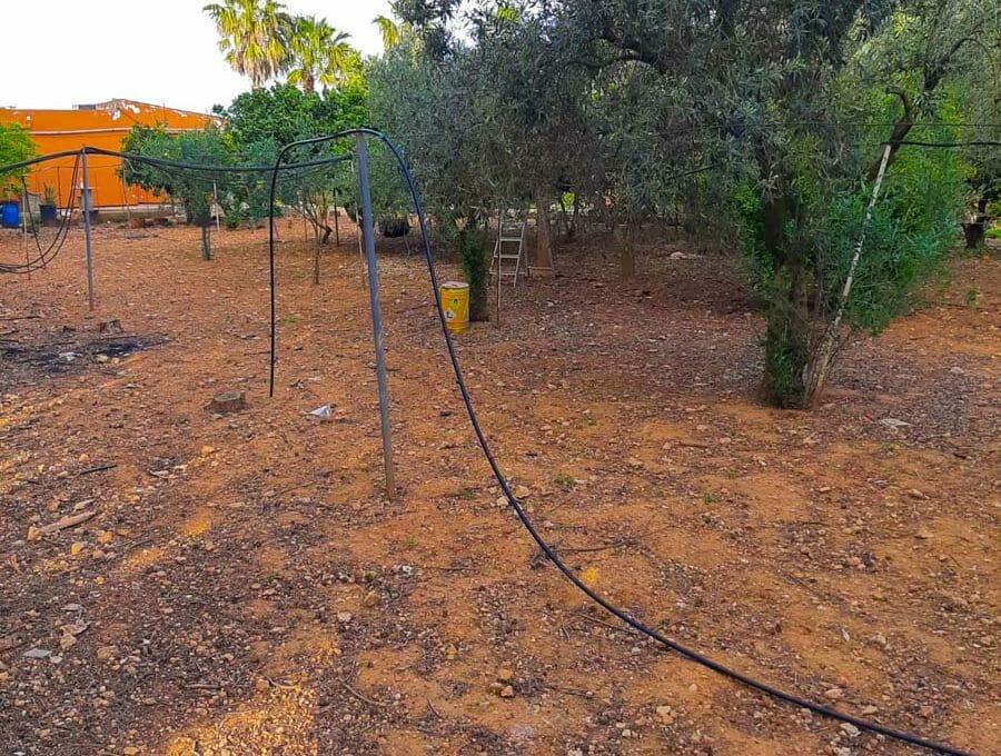 felanitx finaca mit obstbäume garten und bewässerung