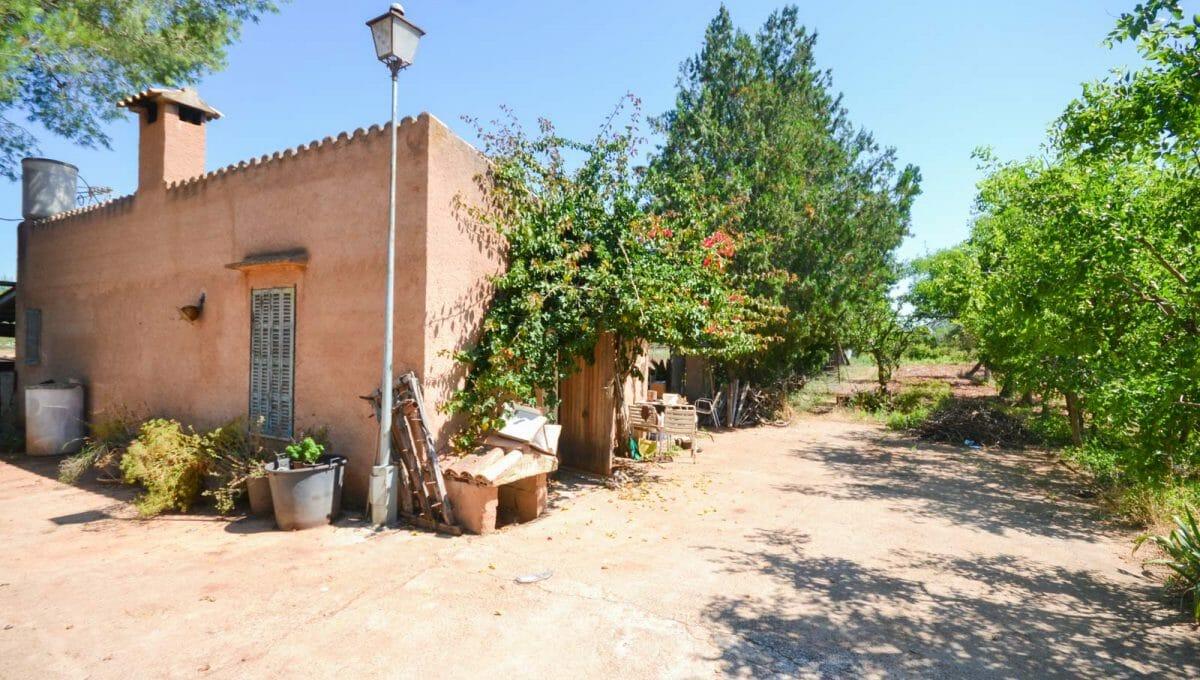 Finca Felanitx mit Obstbäumen
