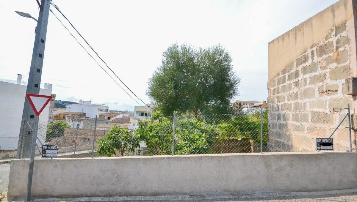 Gelände Zentrum Felanitx Mallorca