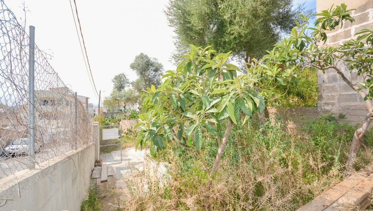 Grundstück in Zentrum zu bauen Felanitx Mallorca