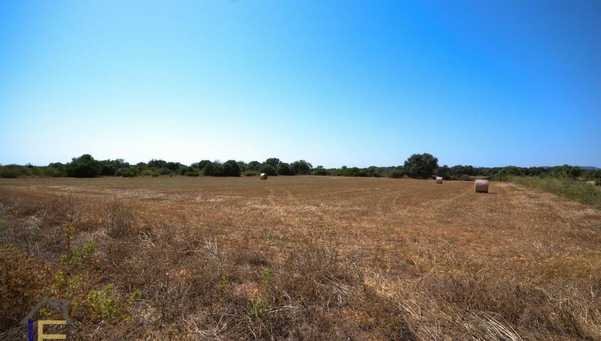 Grundstück in einem flachen Gebiet von Felanitx