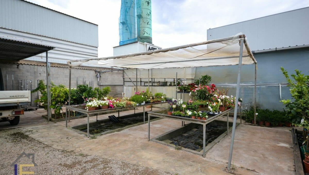 Gartengeschäft in Felanitx