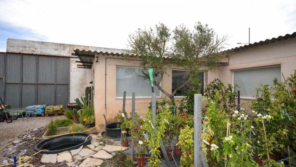 Gartenarbeit mit vielen Pflanzen in Felanitx