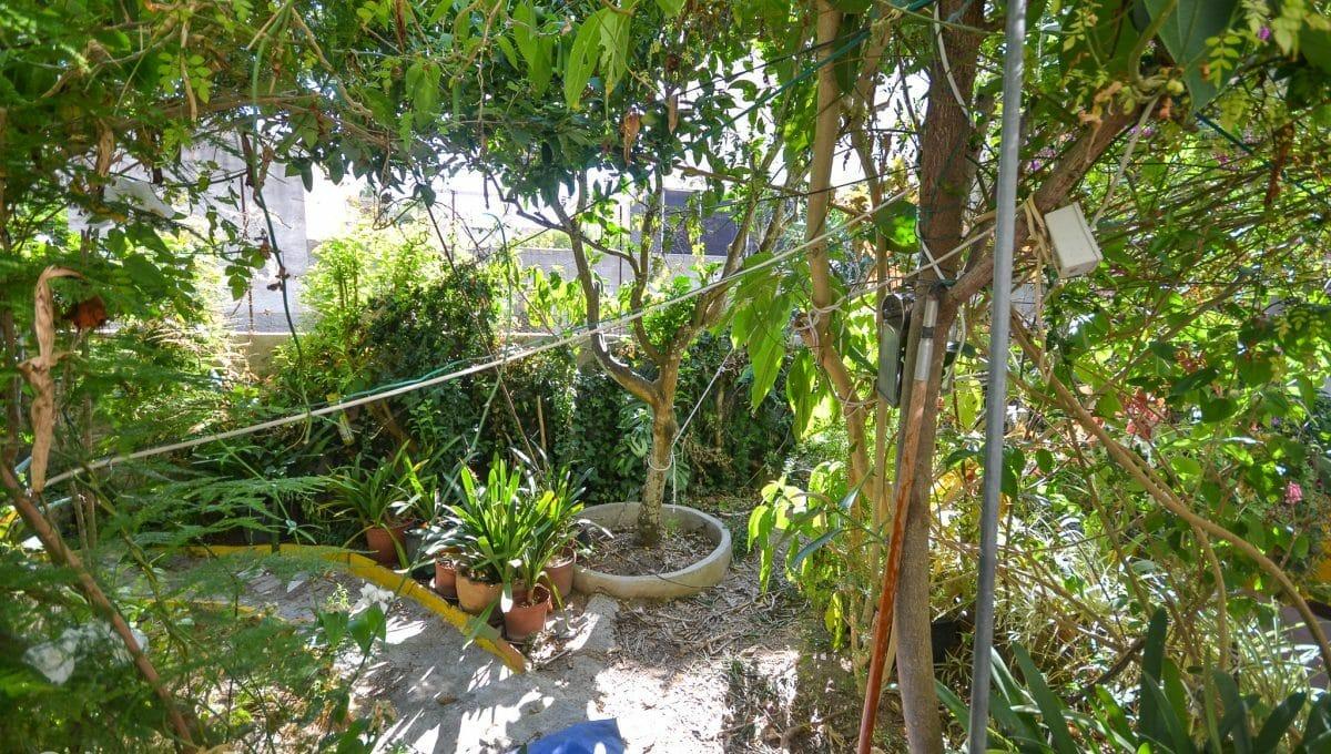 Großer und schöner Garten Wohnung Zentrum Felanitx