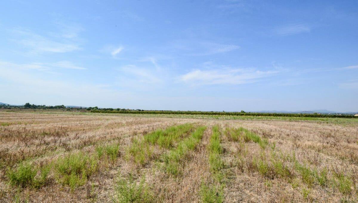 Grundstück neben Felanitx mit Projekt