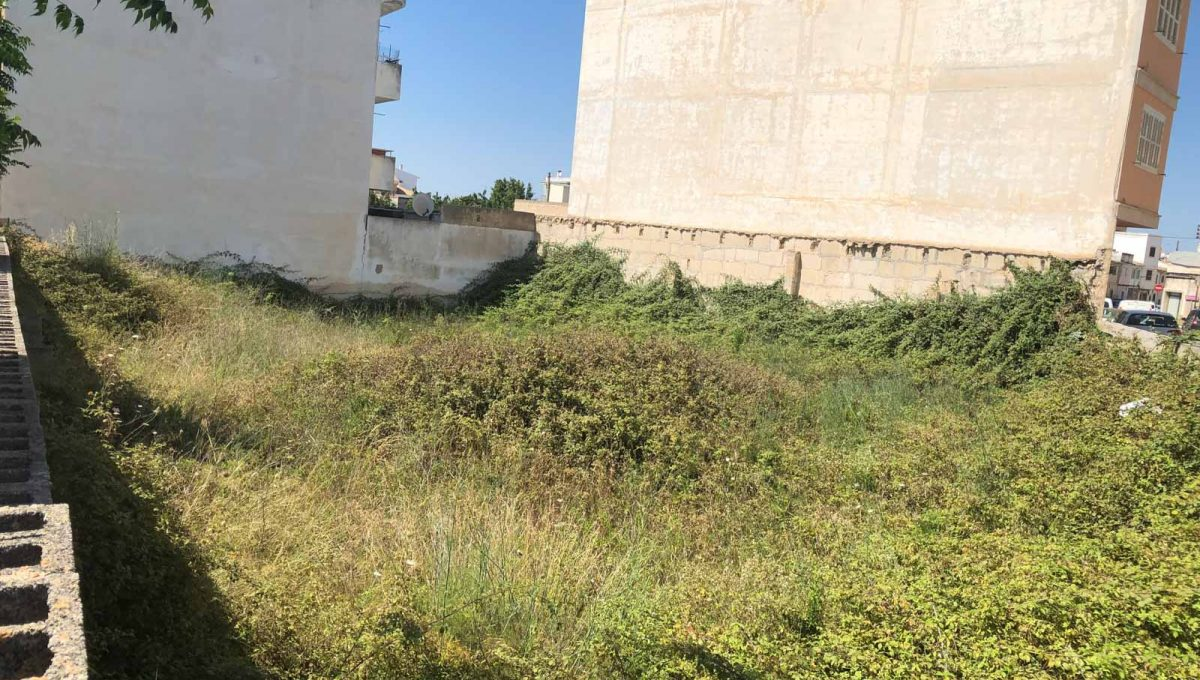 Felanitx Grundstück zum bauen