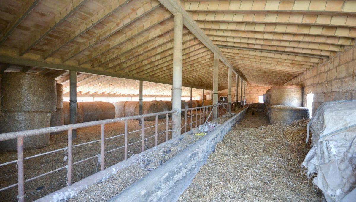 Ställe für Kühe und Pferde in Villafranca