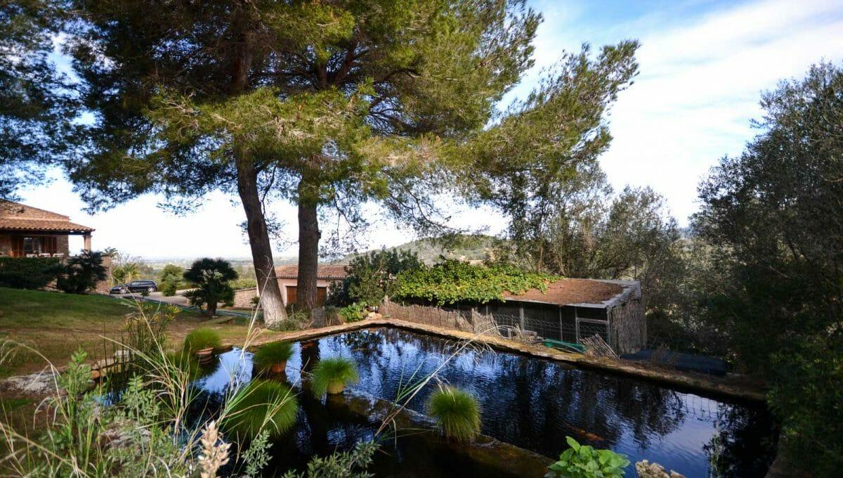 Teich mit Fische in ein luxus Garten in Cas Concos