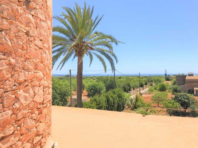 S'Horta Immobilien Finca mit Windmühle