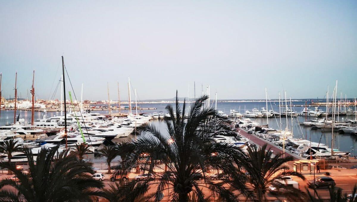 Blick von Wohnung auf Palma´s Hafen Wohnung