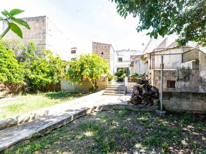 Blick auf Garten, Zitronenbaum und Terrassen